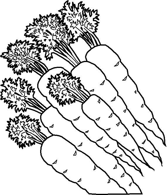 Free Fruit And Vegetables Coloring Pages